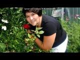 «мая мама» под музыку матурым...яратам мин сине..(русско- татарская песня) - Я тебя люблю. Picrolla